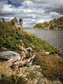 Fishing Montana's Absaroka-Beartooth Wilderness
