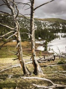 beautiful-images-that-will-make-you-want-to-visit-montanas-absaroka-beartooth-wilderness-athomeonthego.com-travel-blog-21