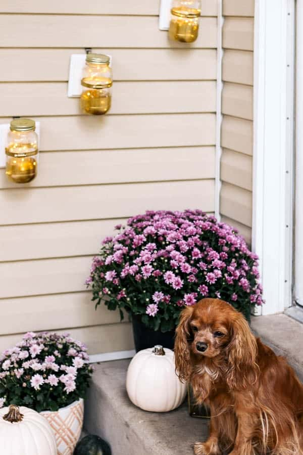 Fall Front Porch At Home With Ashley