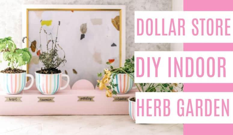 Dollar Store DIY- Indoor Herb Garden