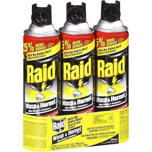 raid-wasp
