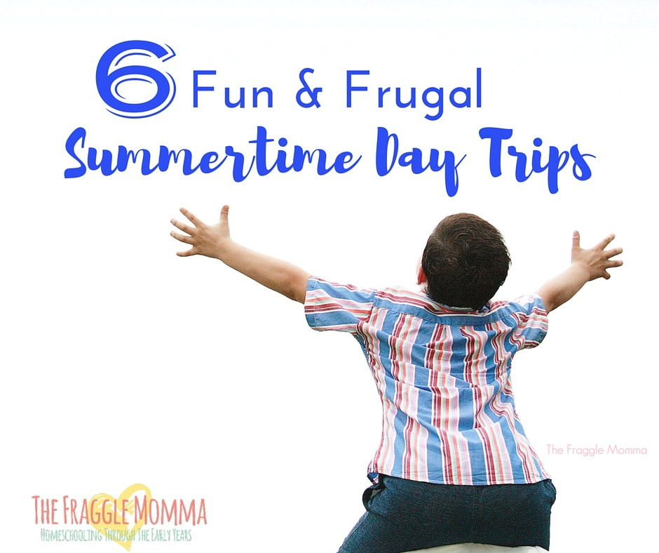 Six Free or Frugal Summertime Field Trip Ideas.