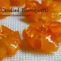 Mứt Tắc - Vietnamese Candied Kumquats