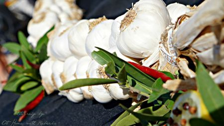 Gilroy Garlic Festival 2015 – The Great Garlic Cook-Off