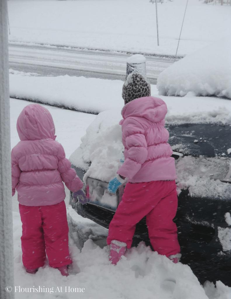 A fisrt snow