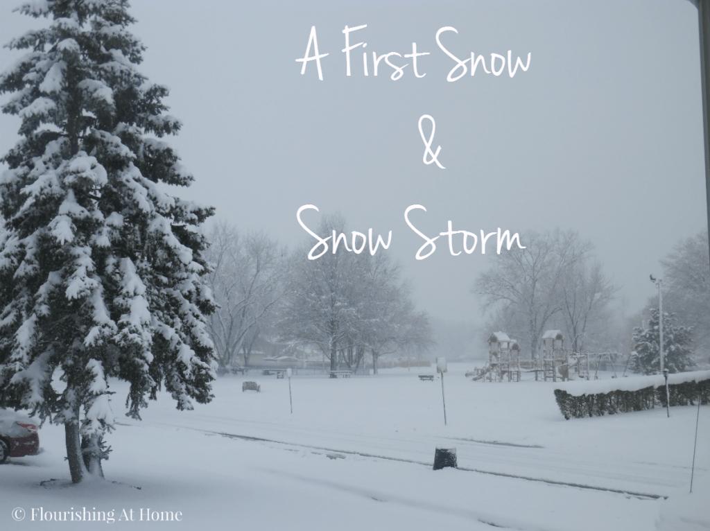 A snow storm