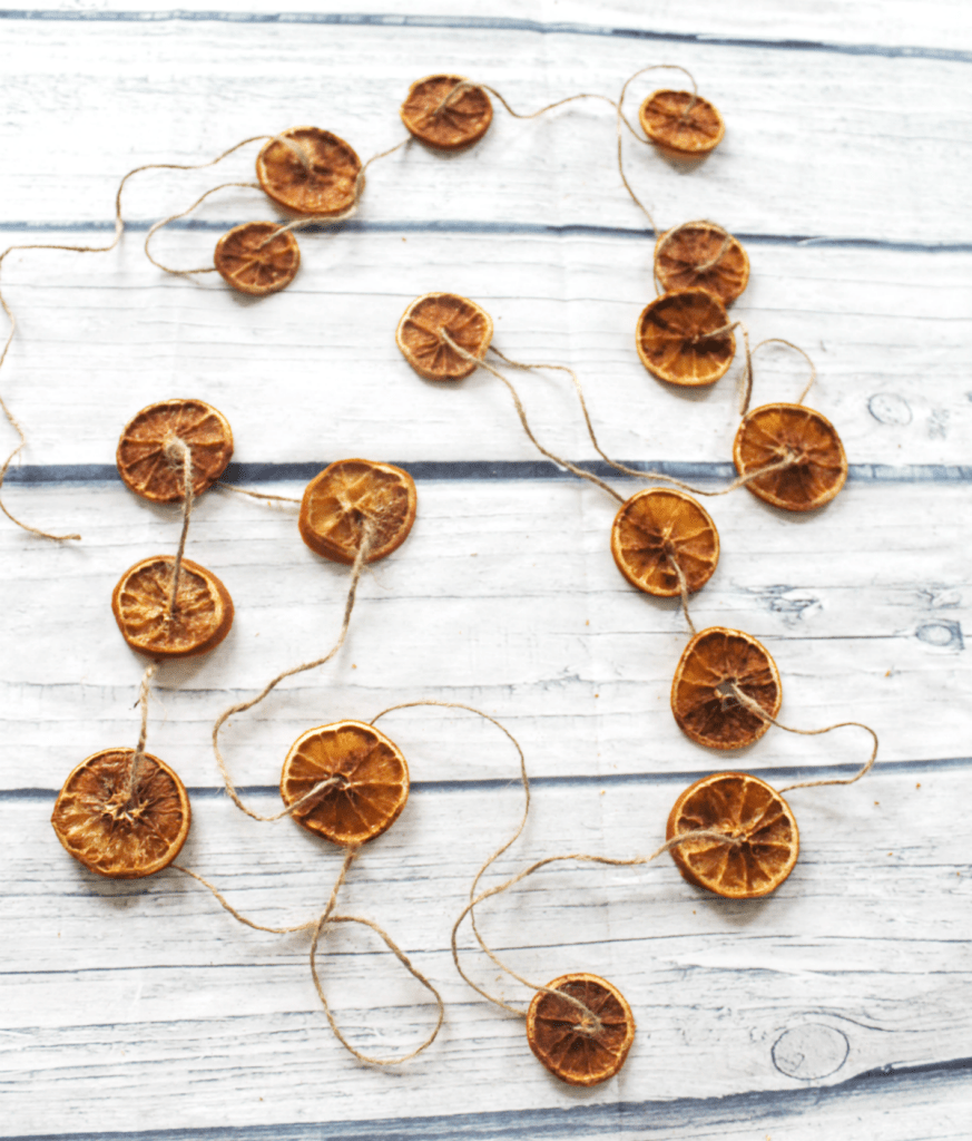 Dried Orange Slices - With - Cinnamon = At Home With Zan -