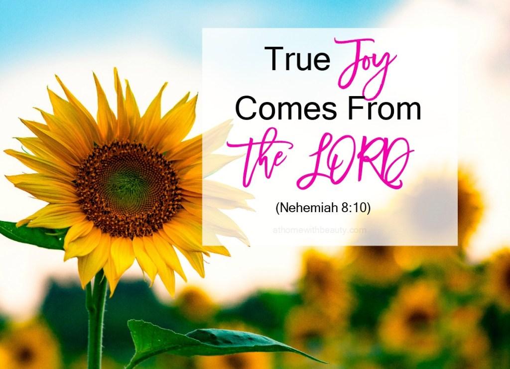 joy at home