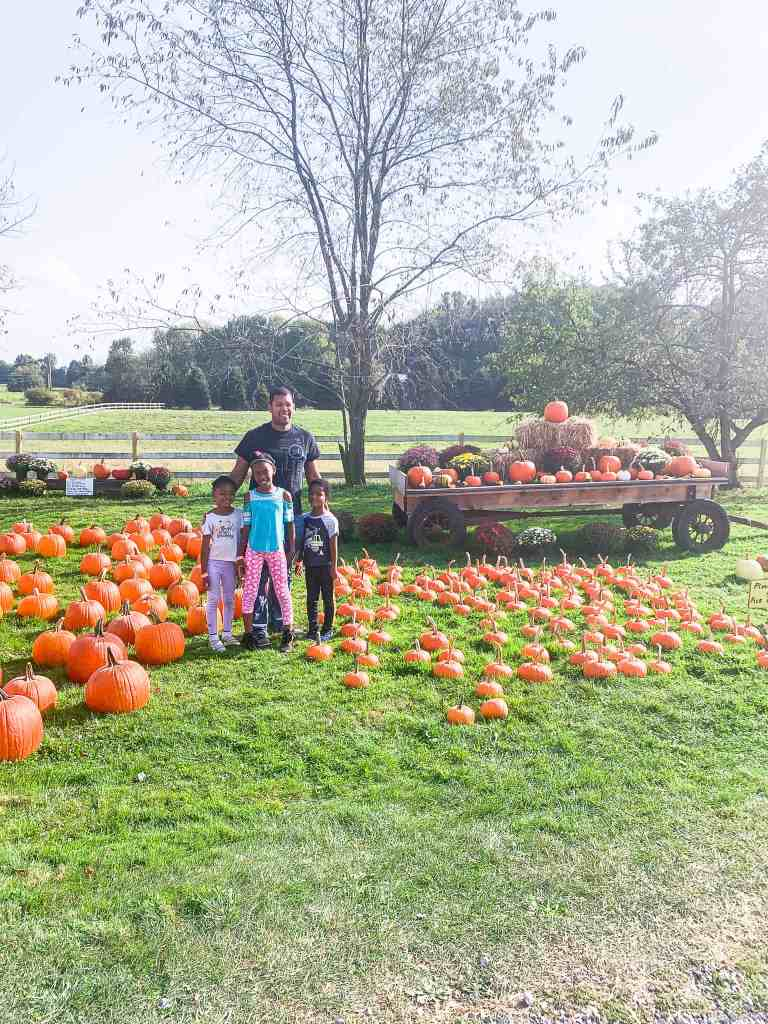 trip to the pumpkin patch