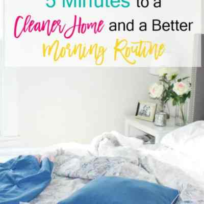5 Minutes to a Cleaner Home