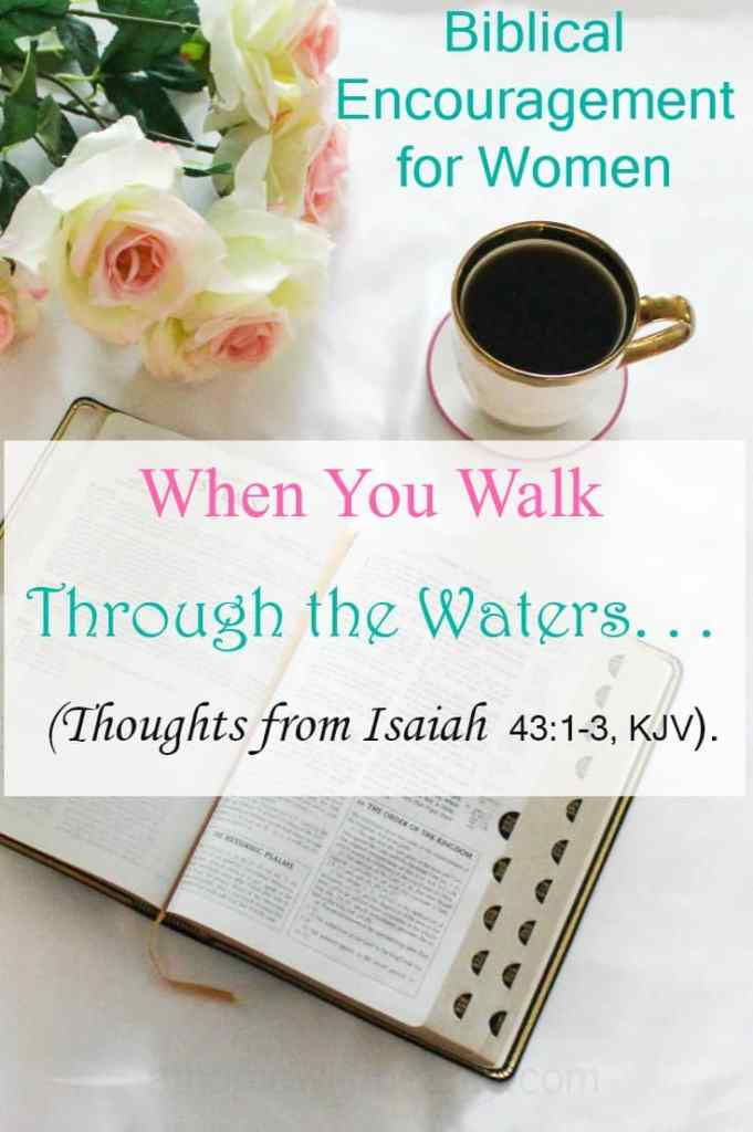When Thou Passest Through the Waters, I will be With Thee - Isaiah 43 - athomewithzan.com