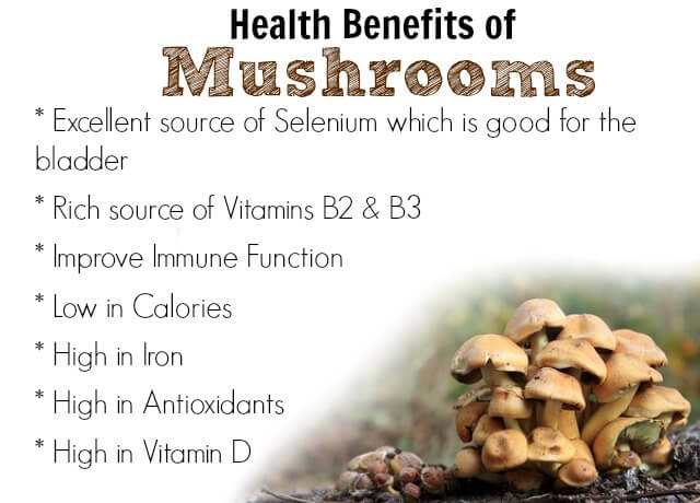 Health-Benefits-of-Mushrooms.jpg