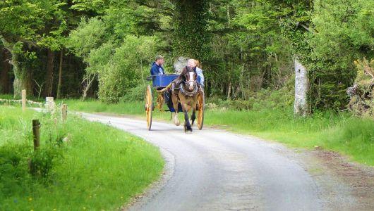 Ireland - Killarney NP