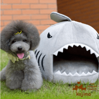 Cute Dog Bed  Let your dog sleep in the sharks mouth