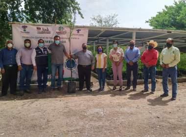 Municipio de Torreón se compromete a donar más árboles.