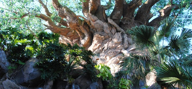 The Tree of Life: Up Close and Personal