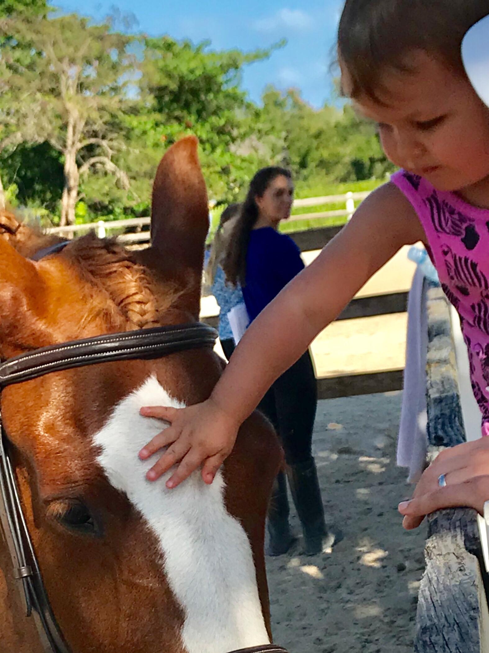 Petting Coco