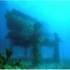 Ultimul laborator subacvatic amenintat de faliment. Imagini surprinzatoare