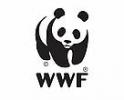 Studiu WWF-Romania: romanii sunt tot mai ingrijorati de starea mediului inconjurator