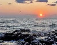 5 propuneri pentru sudul litoralului