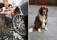 A renuntat la cel mai bun prieten dupa ce i-a distrus masina de lux
