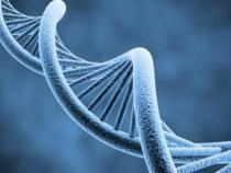 Americanii pot cumpara teste ADN care depisteaza riscul anumitor boli