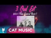 3 Sud Est – Valuri (Felea Emanuel Remix)