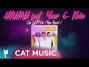 HAVANA feat. Yaar & Kaiia – Big Love (Dip Stage Remix)