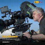 Focus Almodóvar, gratuit pe TIFF Unlimited