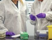 OMS: Tulpina Delta a SARS-CoV-2, cea mai virulentă de până acum