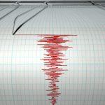 Cutremur de 7,3 pe scara Richter in Japonia