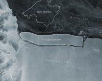 Cel mai mare ghețar din lume s-a desprins de Antarctica, arată datele surprinse de sateliți
