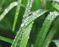 Muntenia: Temperaturile se crește treptat