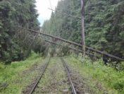 Zeci de copaci căzuți pe calea ferată au îngreunat circulația trenurilor| FOTO