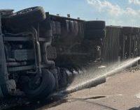 Tulcea: Camion încărcat cu oi, răstunat pe DJ 222 B