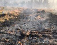 Hunedoara: Pompierii intervin pentru stingerea unui incendiu de vegetație în munții Șureanu   AUDIO