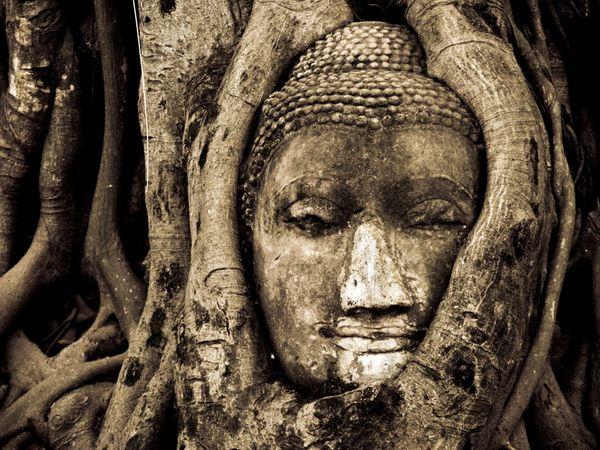 african buddha 5