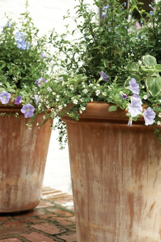 Several Italian Impruneta terra-cotta pots throughout the garden are filled with seasonal annuals.