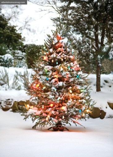 "Mercury glass ornaments add visual stimulation to the family""s colorfully lit tree in the backyard."