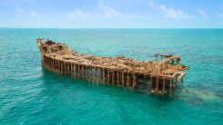 The shipwrecked S.S. Sapona, a popular site for snorkeling and scuba diving.