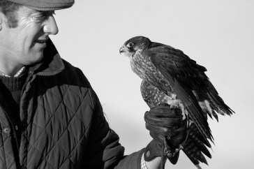 Falconry is one of the many outdoor recreational activities available on-site.