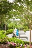Crepe myrtles cascade over the poolside area, joining an array of hydrangeas. Creekside Nurseries served as the landscape contractor. The chaises and umbrella are from Frontgate.