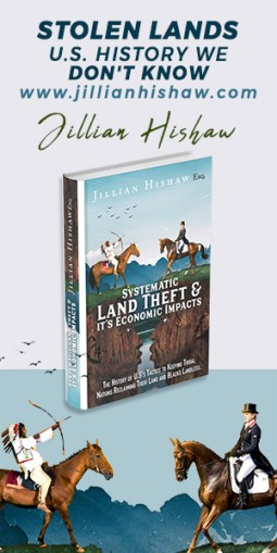 stolen lands 300x600 ad