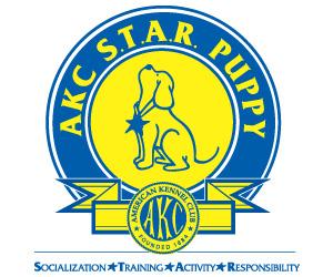 akc-star-puppy