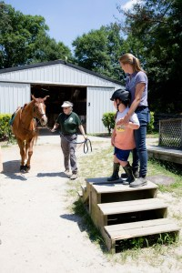 A therapy horse is led to a waiting client.