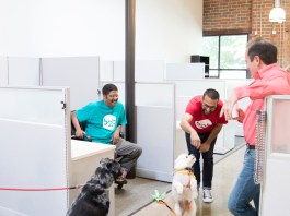Linus dazzles onlookers. Left to right: Bryant o'Hara, Sprocket the catahoula, Linus the white poodle, Azim Manjee, and B2B's CTO and co-founder Don Wolf.
