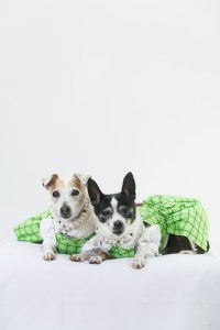 Lucy and Holly wearing green school dresses with lace blouses designed by Lola & Pooch. Nina Parker Photography
