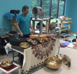 Michael Murphy Burke leads Sound Journey classes to support Good Mews.