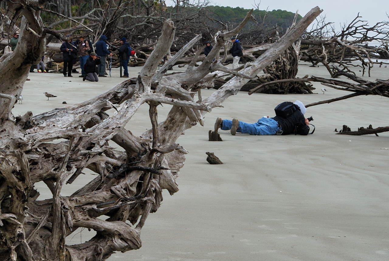 Beaufort Hunting Island Field Trip Report