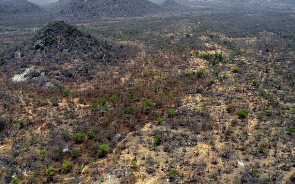 Aerial-view-of-the-Sambisa-Forest